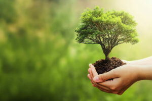 Eco-Smart Schools